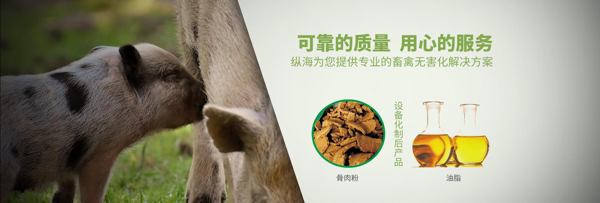 畜禽类污处理设备